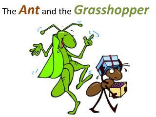 AntGrasshopper.jpg